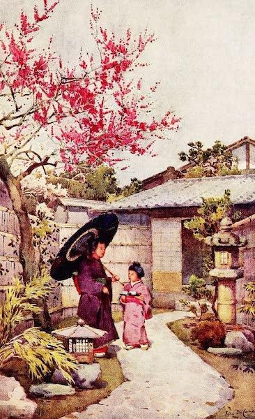 The Flowers and Gardens of Japan - The Kobai Plum Blossom (1908)