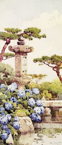 The Flowers and Gardens of Japan - An Hydrangea Bush (1908)