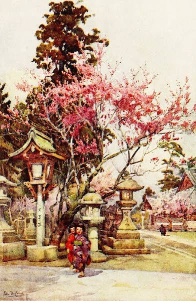 The Flowers and Gardens of Japan - Plum Blossom and Lanterns (1908)