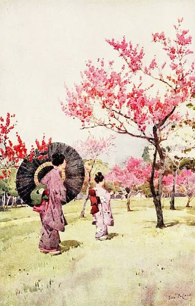 The Flowers and Gardens of Japan - Peach Blossom (1908)