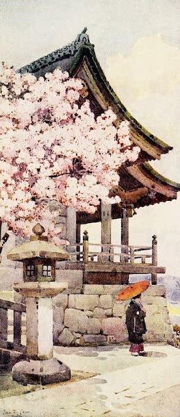 The Flowers and Gardens of Japan - Cherry-tree at Kyomidzu (1908)