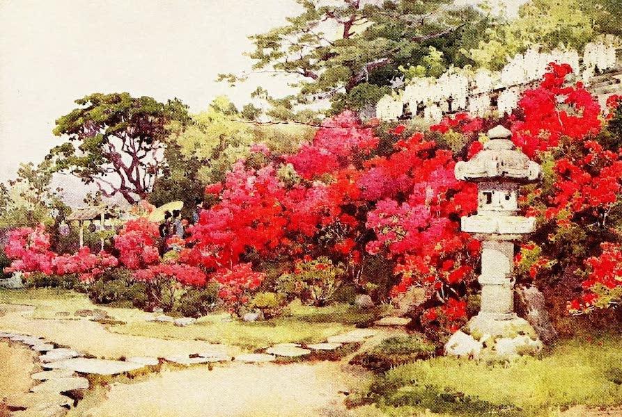 The Flowers and Gardens of Japan - Azaleas, Awata (1908)