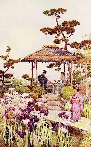 The Flowers and Gardens of Japan - An Iris Garden (1908)