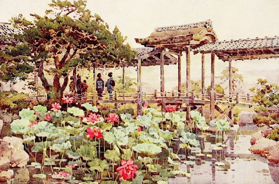 The Flowers and Gardens of Japan - Lotus at Kodaiji (1908)