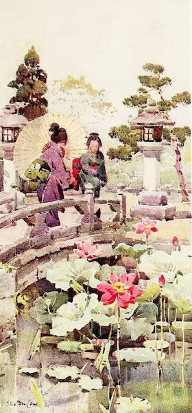 The Flowers and Gardens of Japan - Lotus Flowers (1908)