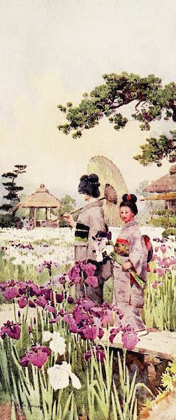 The Flowers and Gardens of Japan - Irises, Horikiri (1908)