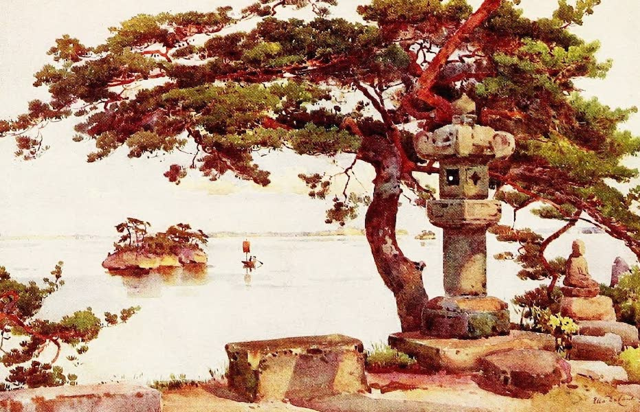 The Flowers and Gardens of Japan - Pine-tree at Matsushima (1908)