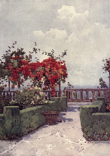 The Flowers and Gardens of Madeira - Quinta do Til (1909)