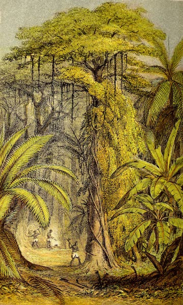 The Gate of the Pacific - Primeval Forest, Preparing for the Iron Road (1863)