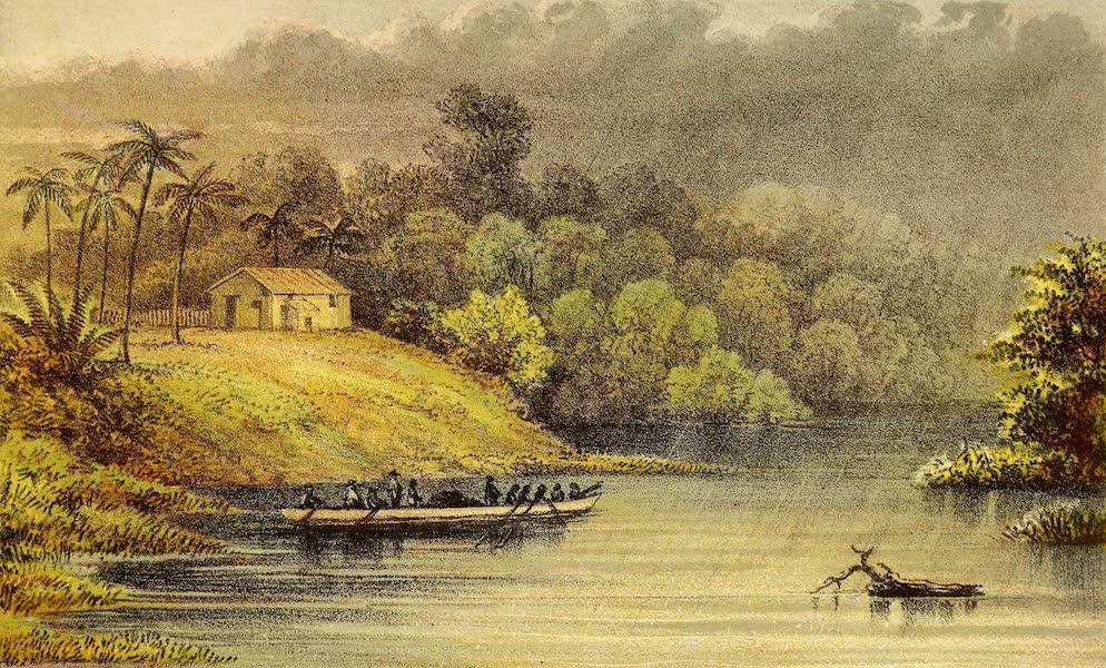 The Gate of the Pacific - View of Plantation just below Machuca Rapids, River San Juan (1863)