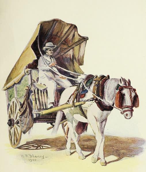 The Golden Caribbean - Market Cart, Cartagena (1900)