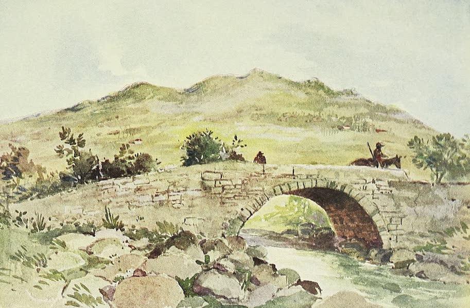 The Golden Caribbean - Bridge in the Suburbs of Cartago (1900)