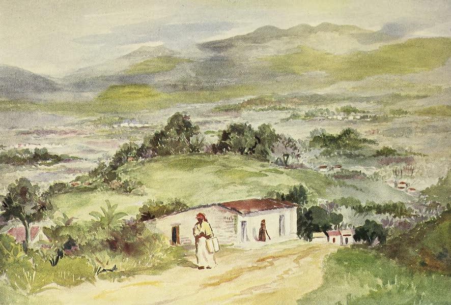 The Golden Caribbean - The Plain of San Jose (1900)