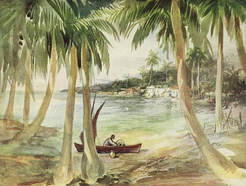 The Golden Caribbean - The Honduras Coast (1900)