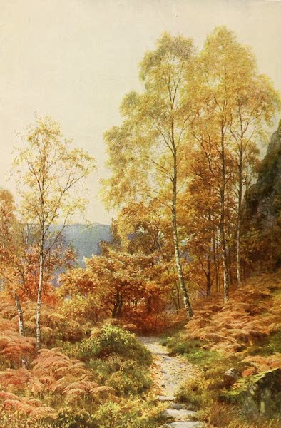 "The Heart of Scotland Painted and Described - ""The Lady of the Woods"" (1909)"