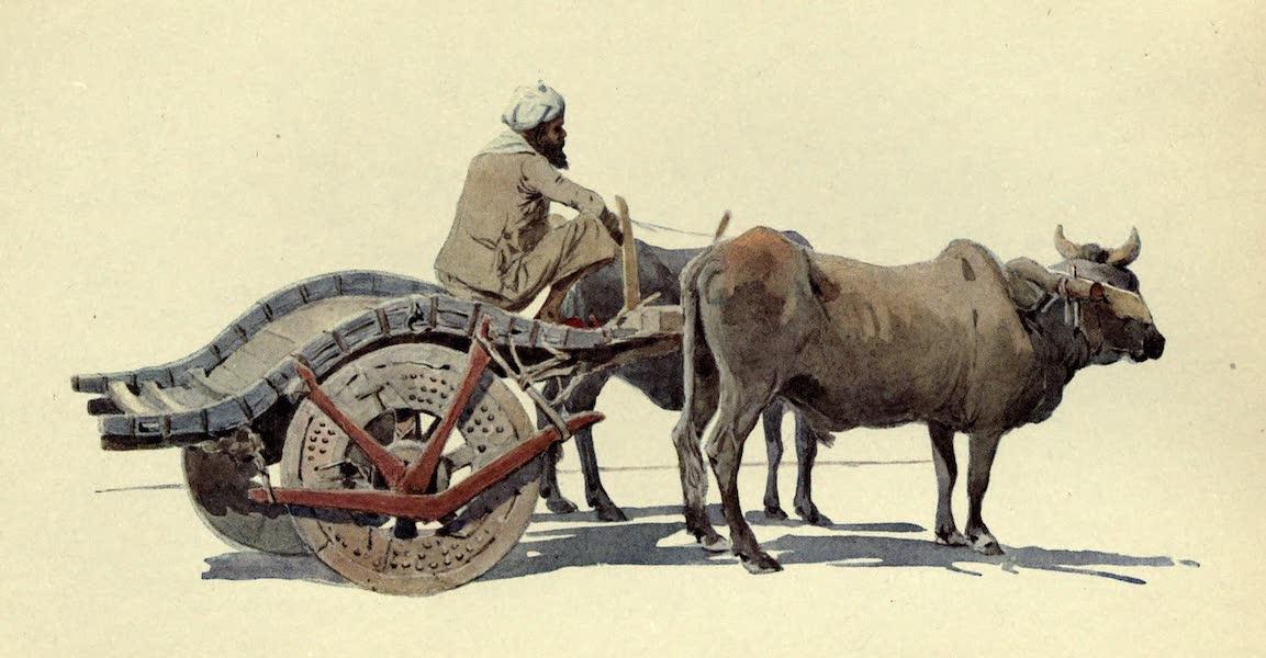 The High-Road of Empire - A Bullock Cart, Jodhupur (1905)