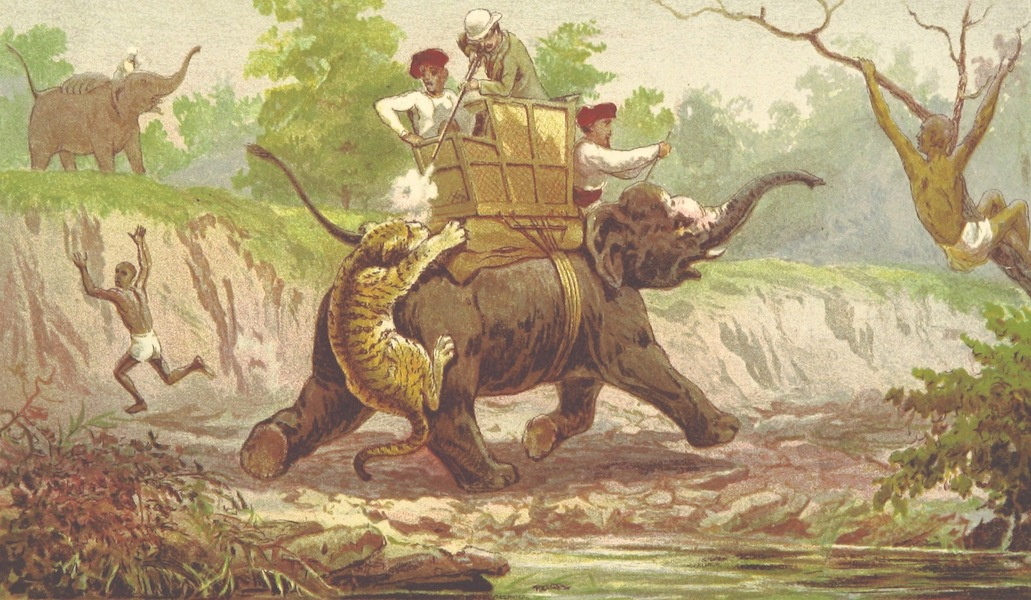 The Highlands of Central India - Death of the Man-Eater (1871)