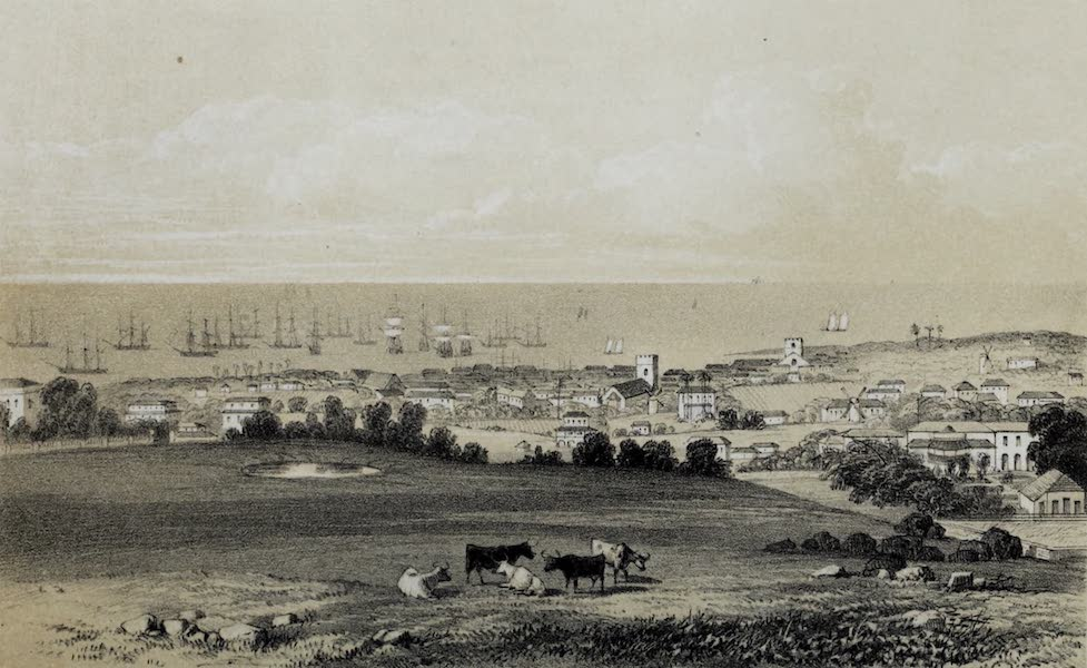 The History of Barbados - Bridgetown in Barbados, taken from Grand View Villa (1848)