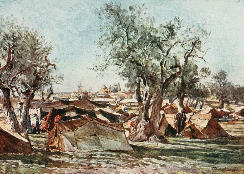 The Holy Land, Painted and Described - Bedouin Encampment outside the North Wall of Jerusalem (1902)