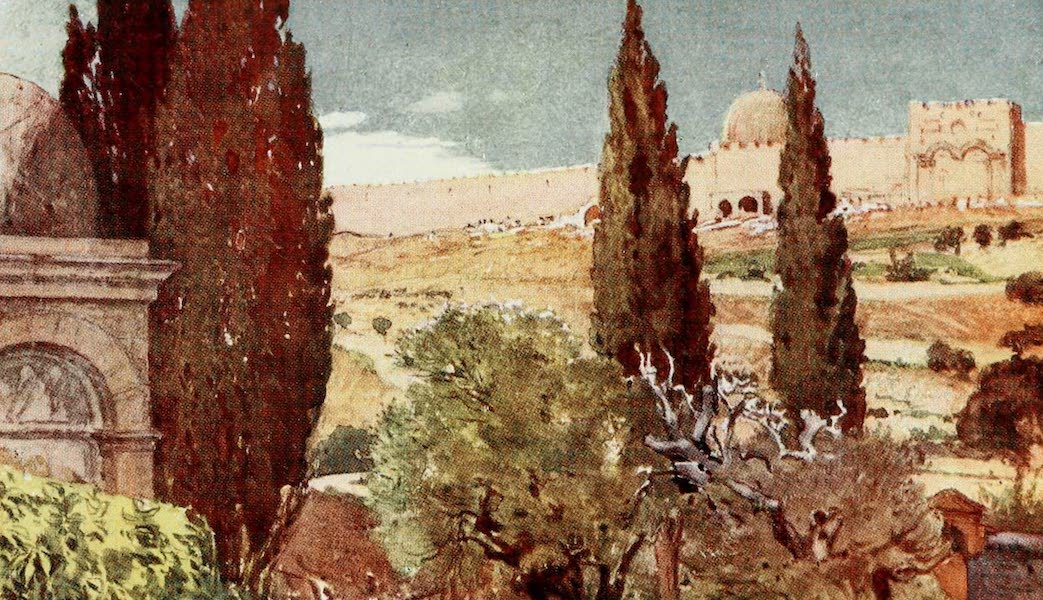 The Holy Land, Painted and Described - The Cypresses of the Garden of Gethscmane (1902)