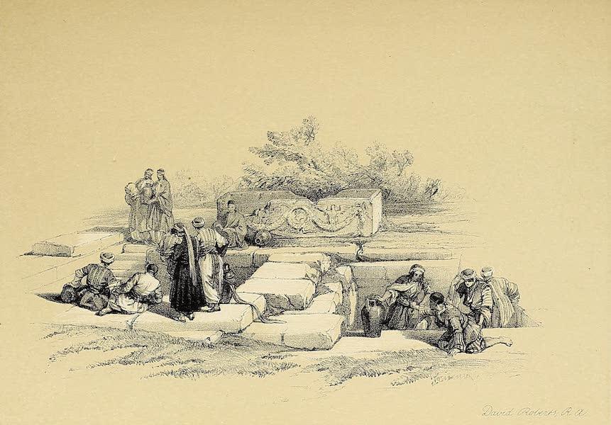 The Holy Land : Syria, Idumea, Arabia, Egypt & Nubia Vols. 1 & 2 - Fountain of Cana (1855)