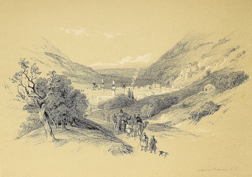 The Holy Land : Syria, Idumea, Arabia, Egypt & Nubia Vols. 1 & 2 - Entrance to Nablous (1855)