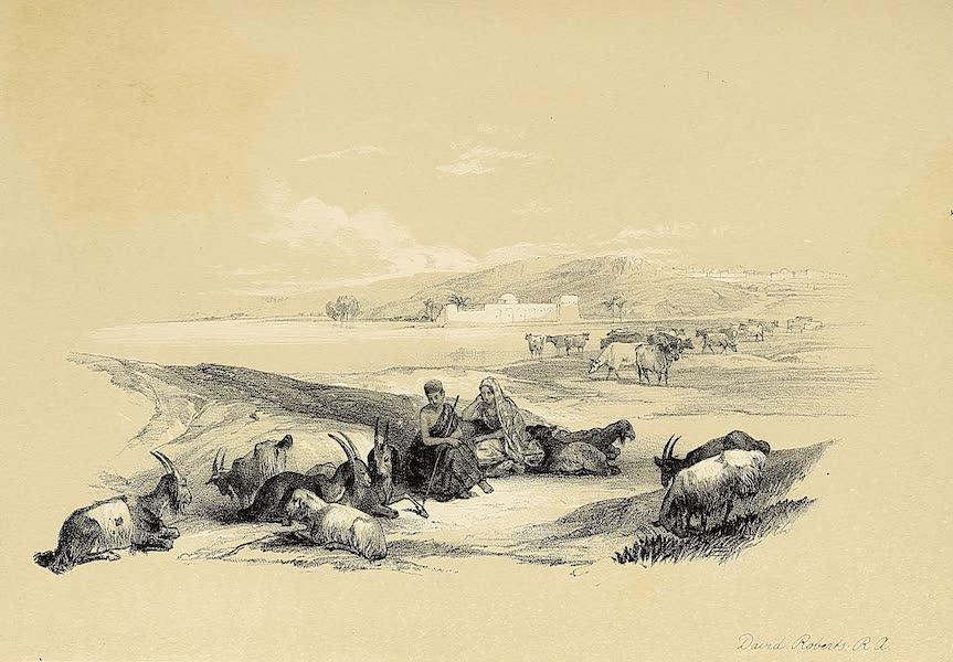 The Holy Land : Syria, Idumea, Arabia, Egypt & Nubia Vols. 1 & 2 - Ashdod (1855)