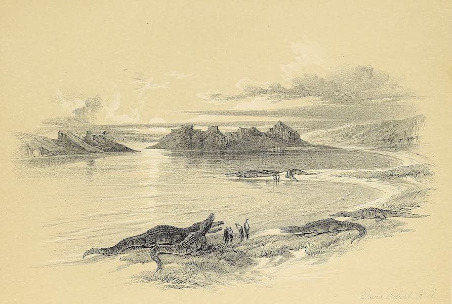 The Holy Land : Syria, Idumea, Arabia, Egypt & Nubia Vols. 5 & 6 - Scene on the Nile near Wady Dabod, with Crocodiles (1855)