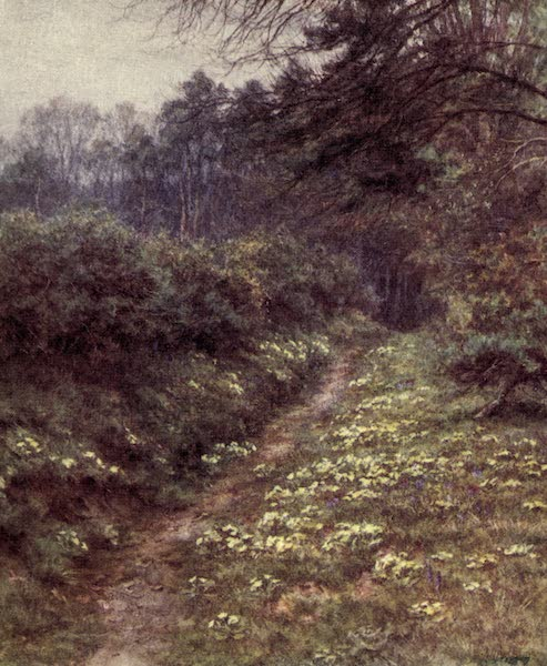 The Homes of Tennyson Painted and Described - The Primrose Path of Dalliance, Farringford (1905)