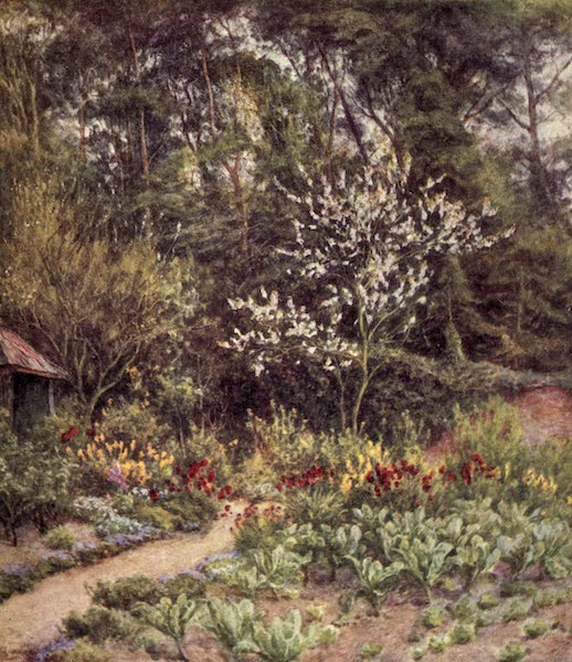 The Homes of Tennyson Painted and Described - In the Kitchen Garden, Farringford (1905)