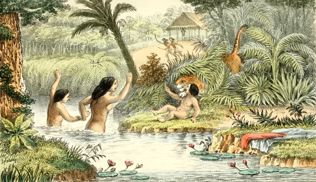 The Indian Tribes of Guiana - Cougar Seizing Child (1868)