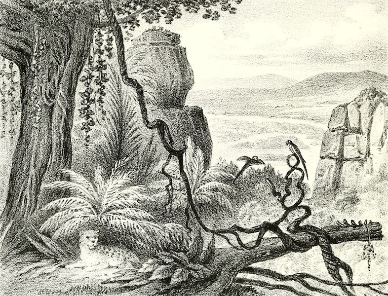 The Indian Tribes of Guiana - Comuti, or Water-Jar Rock (1868)