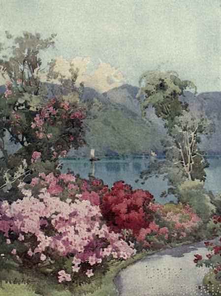 The Italian Lakes, Painted and Described - Azaleas, Lago di Como (1912)