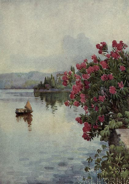 The Italian Lakes, Painted and Described - Oleanders (1912)