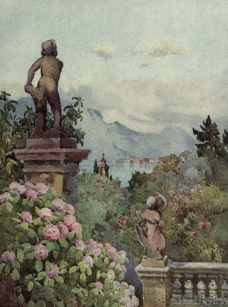 The Italian Lakes, Painted and Described - Hydrangeas, Isola Bella, Lago Maggiore (1912)