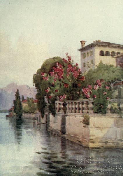 The Italian Lakes, Painted and Described - Oleanders, Lago d'Orta (1912)