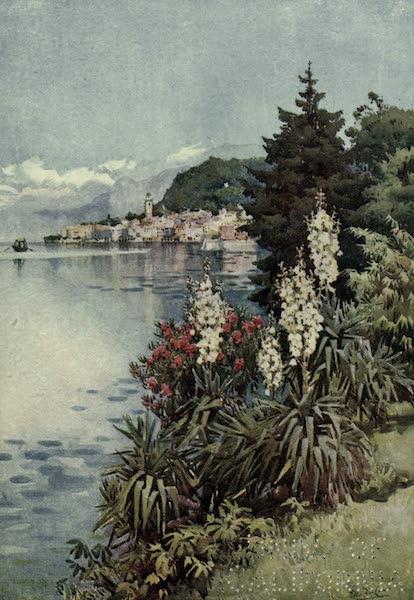The Italian Lakes, Painted and Described - A Group of Yuccas, Villa Melzi, Lago di Como (1912)