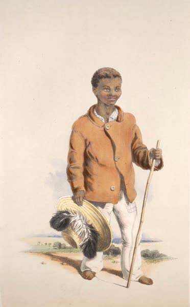 The Kafirs Illustrated in a Series of Drawings - Karl Julius, a Hottentot Herd Boy (1849)