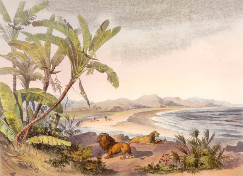 The Kafirs Illustrated in a Series of Drawings - Mouth of the Umvoti River on Indian Ocean, Natal (1849)