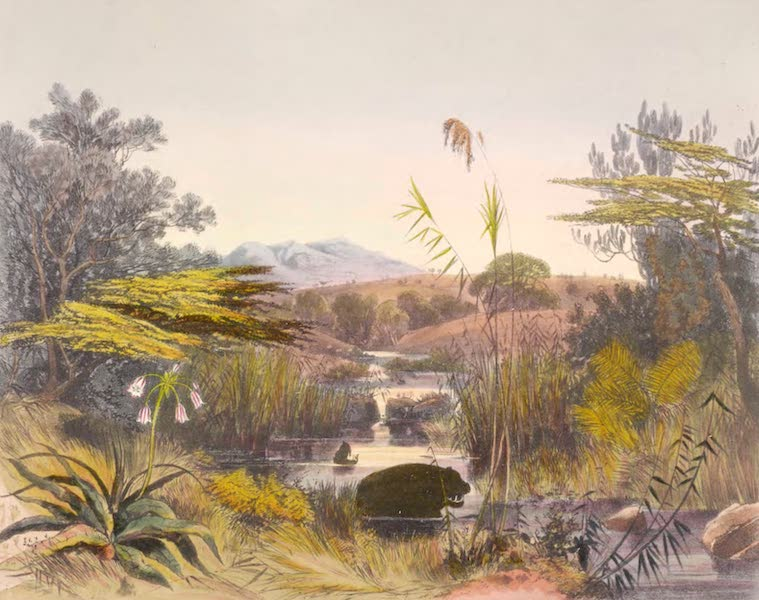 The Kafirs Illustrated in a Series of Drawings - Evening Scene on the Umnonoti River (1849)