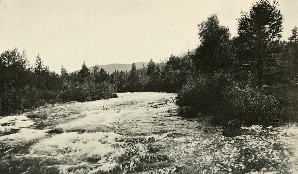 The Lake of the Sky, Lake Tahoe - The picturesque Truckee River, near Lake Tahoe (1915)