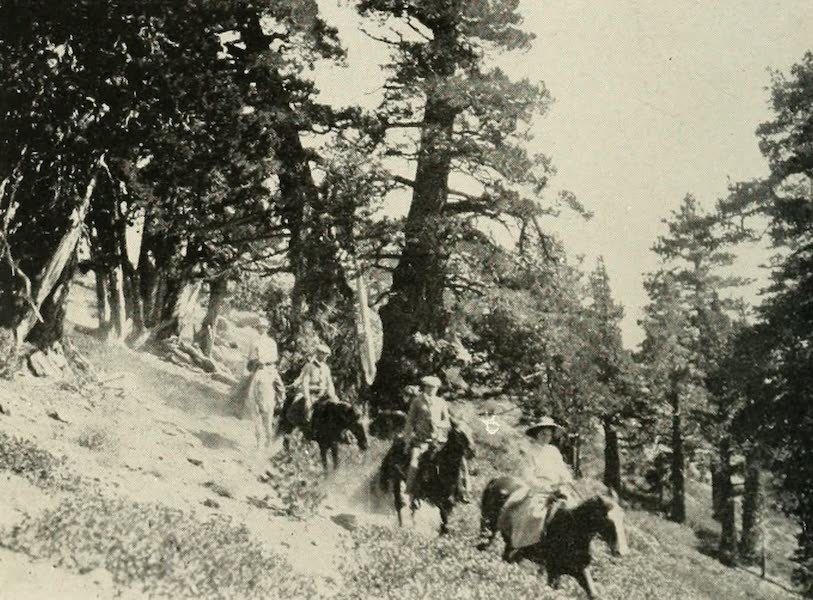 The Lake of the Sky, Lake Tahoe - On the Trail Returning from the Summit of Mt. Tallac (1915)