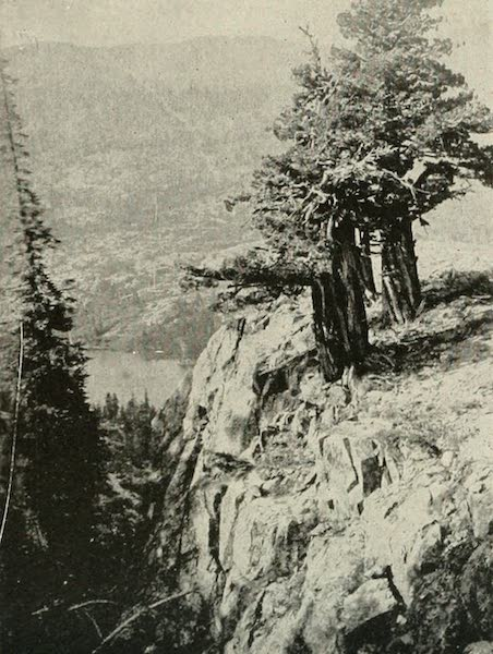 The Lake of the Sky, Lake Tahoe - Glimpse of Grass Lake, looking across and up Glen Alpine Canyon (1915)