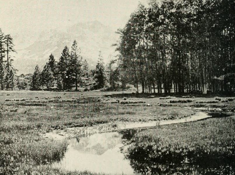 The Lake of the Sky, Lake Tahoe - Tahoe Meadows, With Mt. Tallac in the Distance (1915)