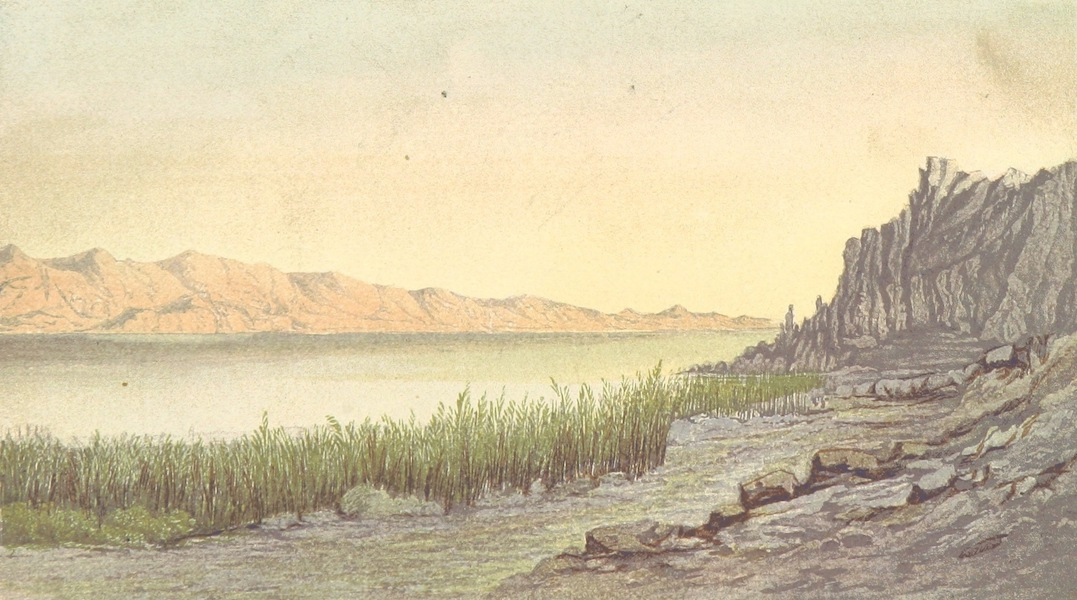 The Land of Israel - At Ain Feshkhah, North-West Side of Dead Sea (1865)