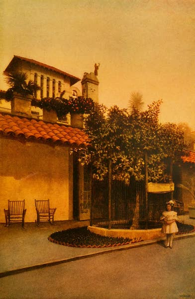 The Land of Living Color - At the Shrine of the Parent Tree (1915)