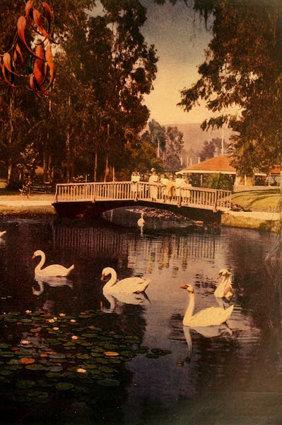 The Land of Living Color - In Eastlake Park, Los Angeles (1915)