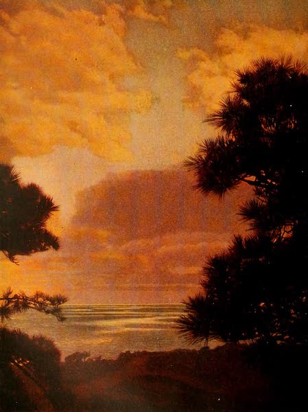 The Land of Living Color - Among the Torrey Pines (1915)