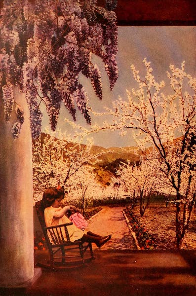 The Land of Living Color - Springtime in the Santa Clara Valley (1915)