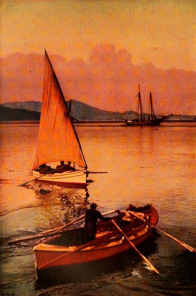 The Land of Living Color - Fishing on San Francisco Bay (1915)